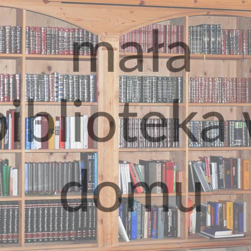 mała biblioteka w domu